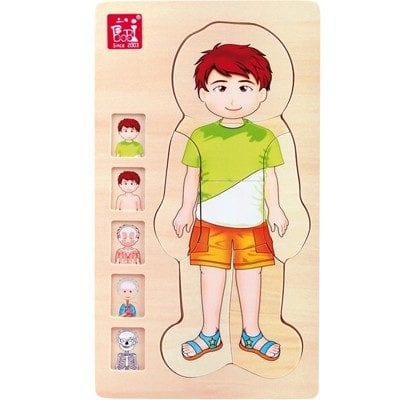 Body Puzzle Boy – 4 layers