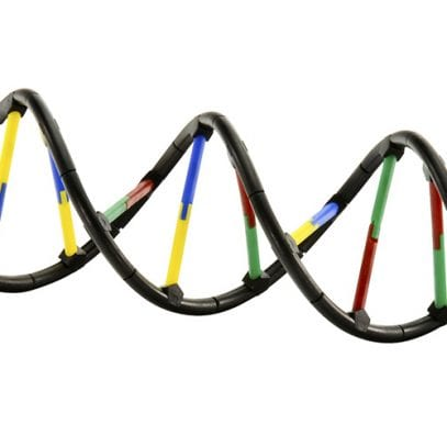 Genetics-and-Dna-Science-Kit