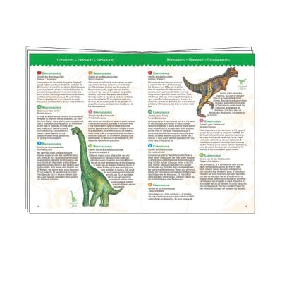 Djeco Observation Puzzle Dinosaurs